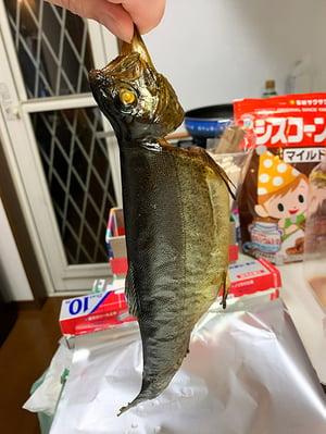 29_sonogokunsei2